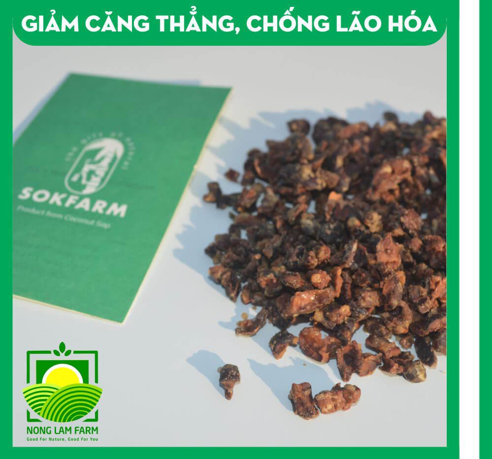 hạt cacao mật hoa dừa