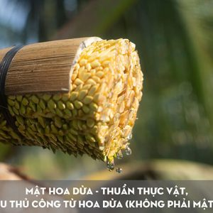 Hoa dừa