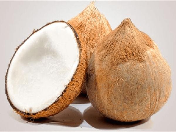 Trái dừa già làm dầu dừa